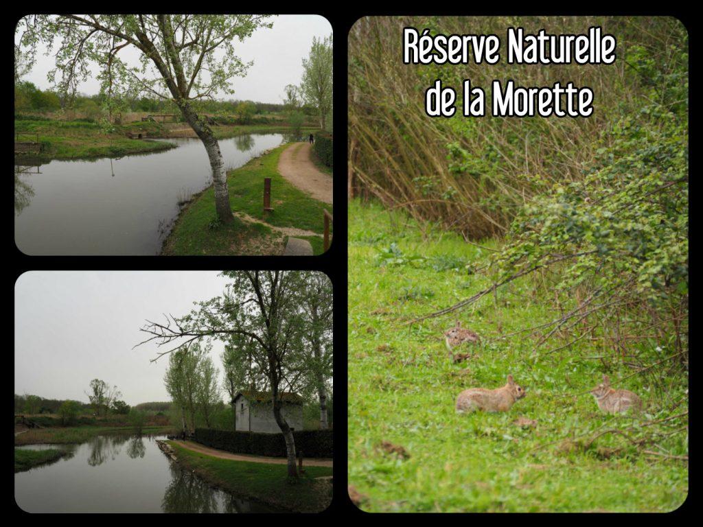 Réserve Naturelle de la Morette