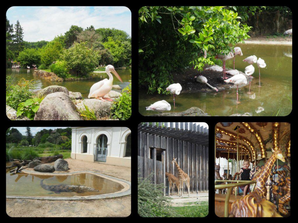 Parc zoologique Parc de la tête d'or